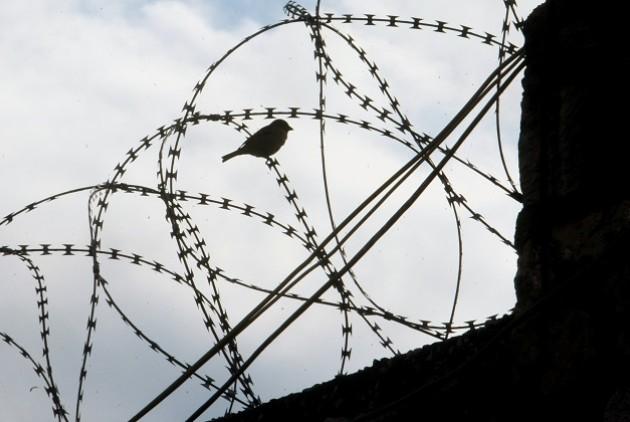 Η κραυγή του απεργού πείνας Βασίλη Δημάκη: «Δεν θα με κάνετε ξανά αυτό που ήμουν»