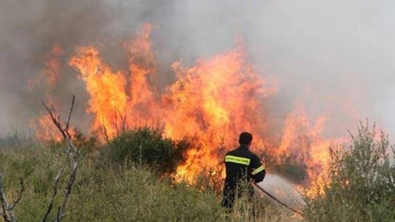 Δασικές πυρκαγιές: Από την καταστολή των πυρκαγιών στη διαχείριση του δάσους. Του Πέτρου Κακούρου