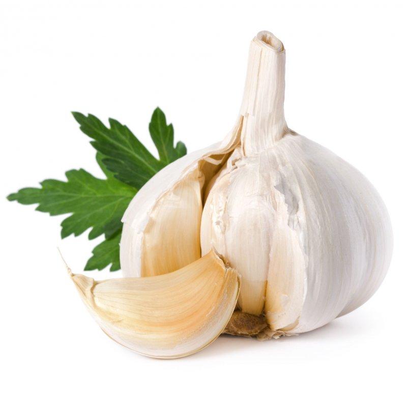 Φυσικό εντομοαπωθητικό με σκόρδο και μαϊντανό